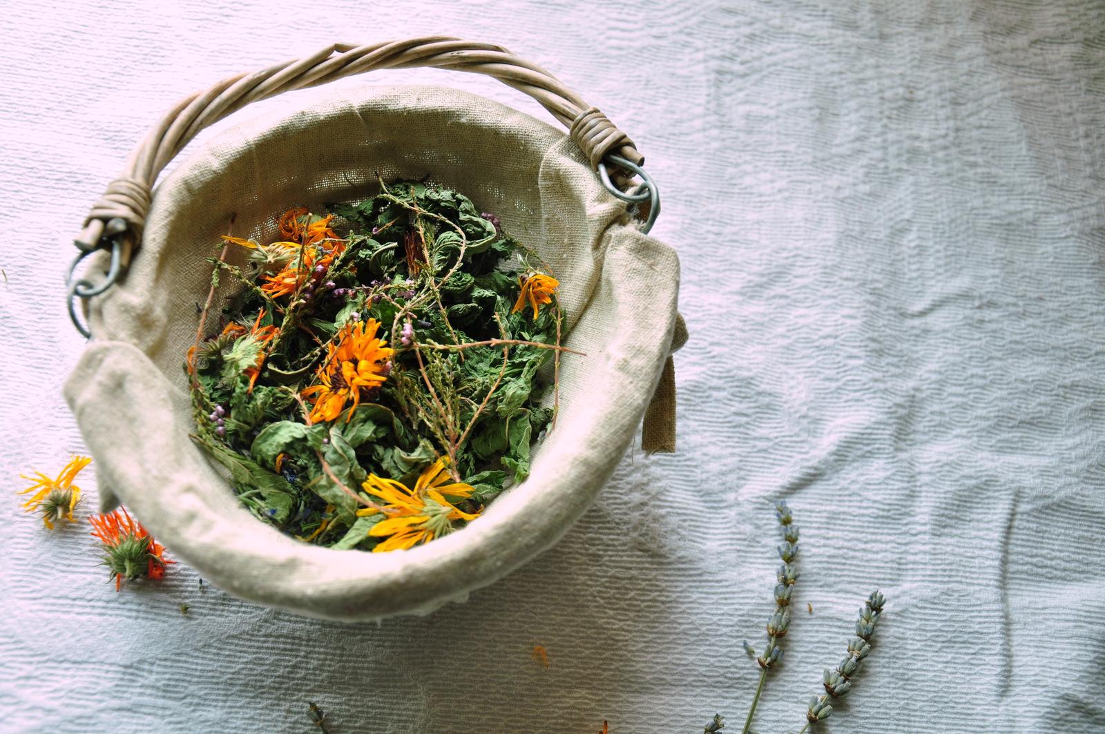 Au jardin d'Aïda, tisane bio, plantes aromatiques et médicinales, creuse, boussac, limousin, nouvelle aquitaine, tisane biologique
